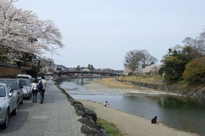 20070408isuzugawa1