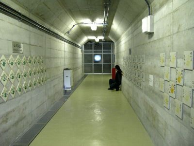 20070708origawadam1