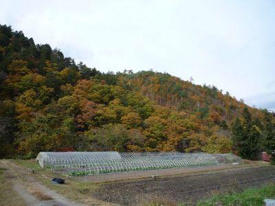 20081102kiyomifurusatogakko1