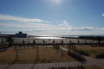 20110110harsunori05