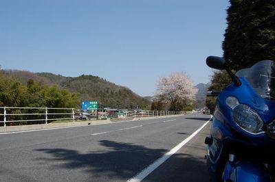 20110410sakuratouring08
