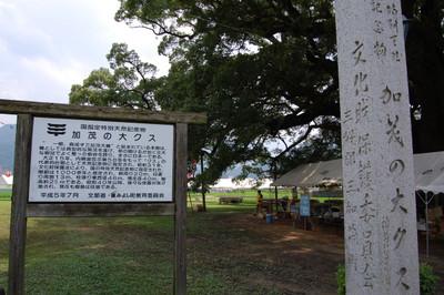 20120730shikokukamonoookusu01