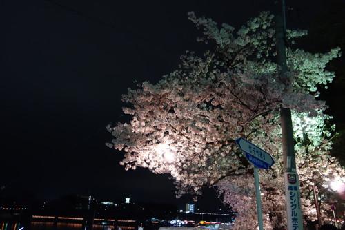20150404okazakikouen05
