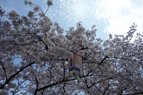 20150404suharakouen04