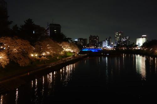 20160402sakura23