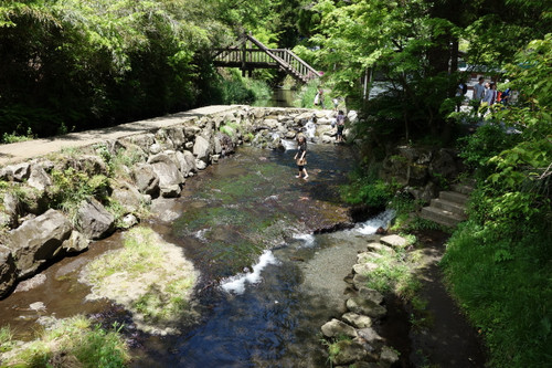 20170505shirakawasuigen10