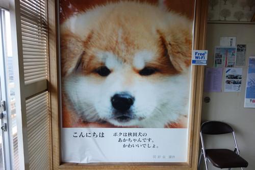 20171010akitakenkaikan02